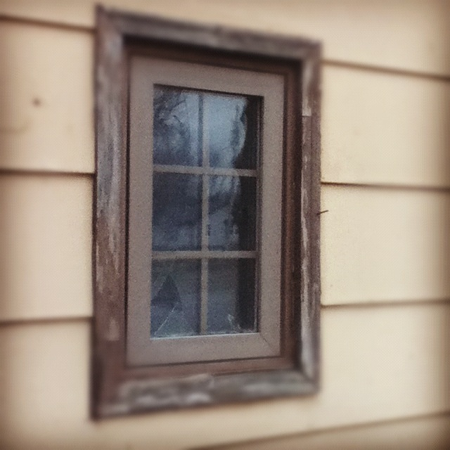 I like to think we're all a little like this window, rough around the edges, reflecting out to the world all that we see.