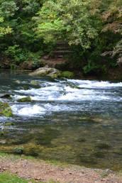Springs 5