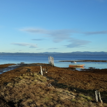Willapa Bay as seen from Oysterville Sea Farms